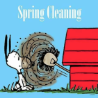 ring-leaning-who-has-been-busy-spring-cleaning-lately-what-19486138